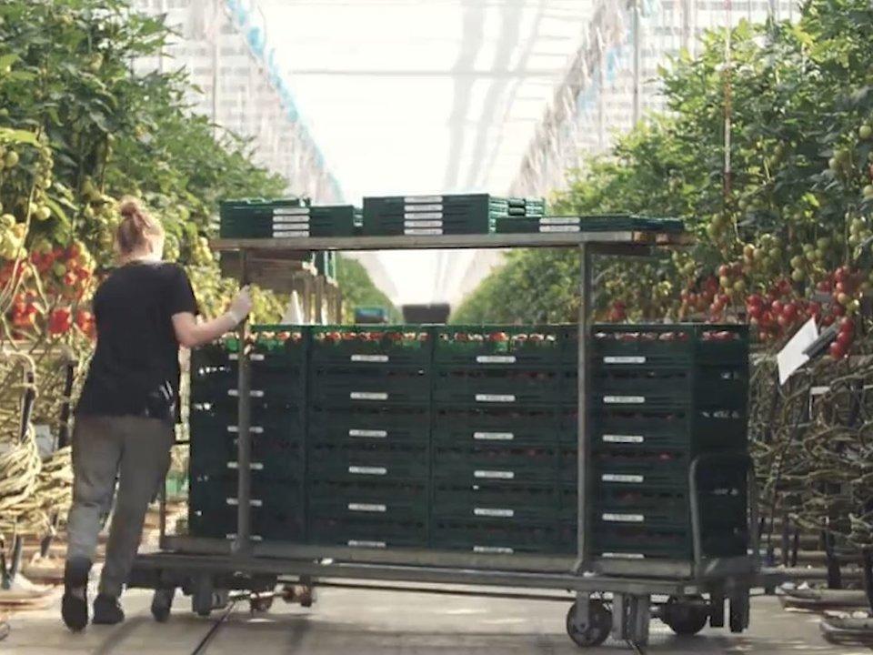 Fruit farming technology trails in the EU - IOF2020 - Intelligent fruit  logistics - IoF2020